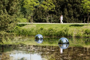 Bubbles-Philipp-Dreber_1